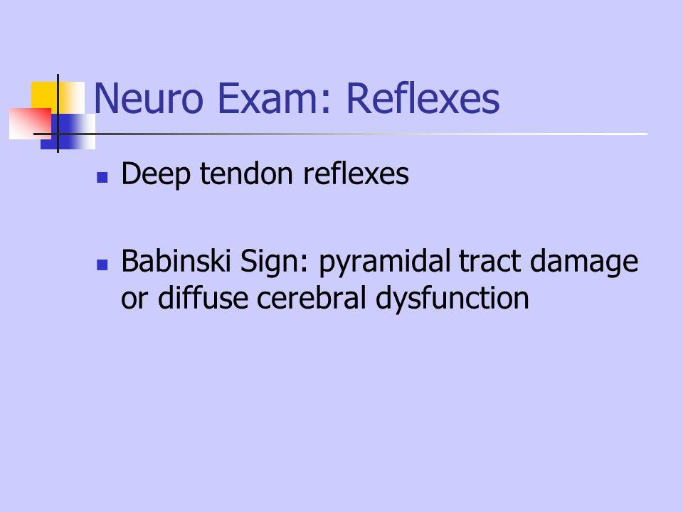 Neuro Exam: Reflexes Deep tendon reflexes