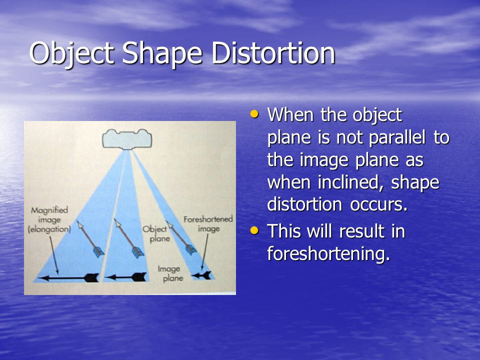 Object Shape Distortion
