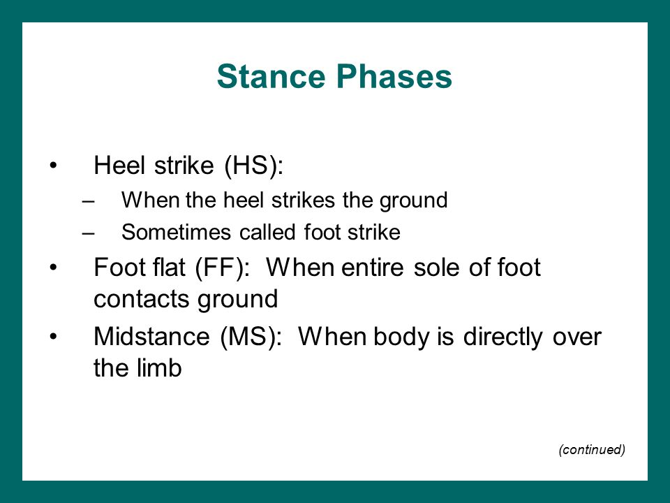 Stance Phases Heel strike (HS):