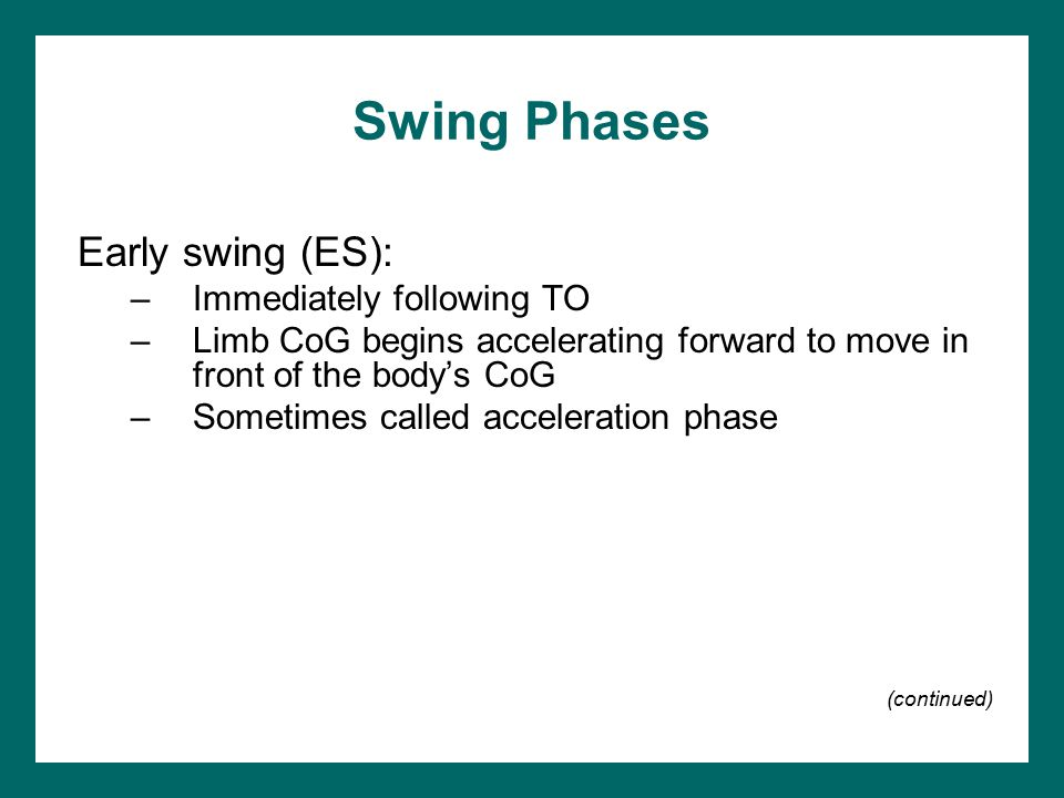Swing Phases Early swing (ES): Immediately following TO