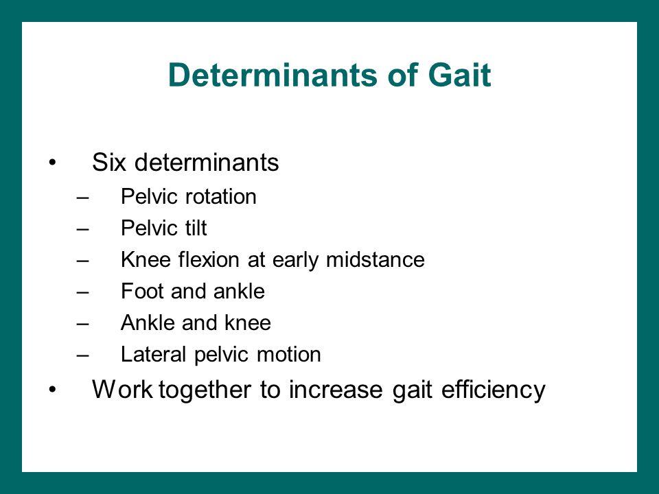 Determinants of Gait Six determinants