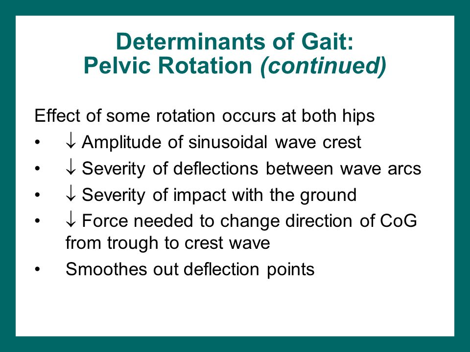 Determinants of Gait: Pelvic Rotation (continued)