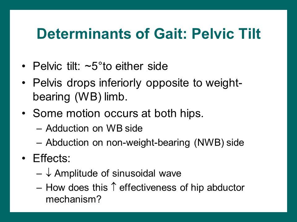 Determinants of Gait: Pelvic Tilt
