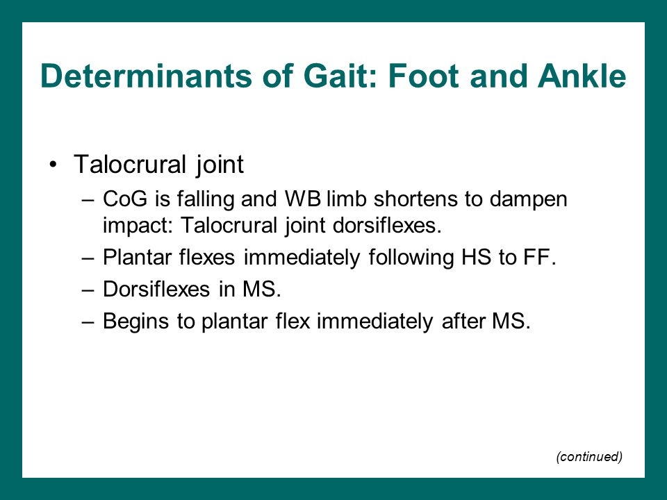 Determinants of Gait: Foot and Ankle