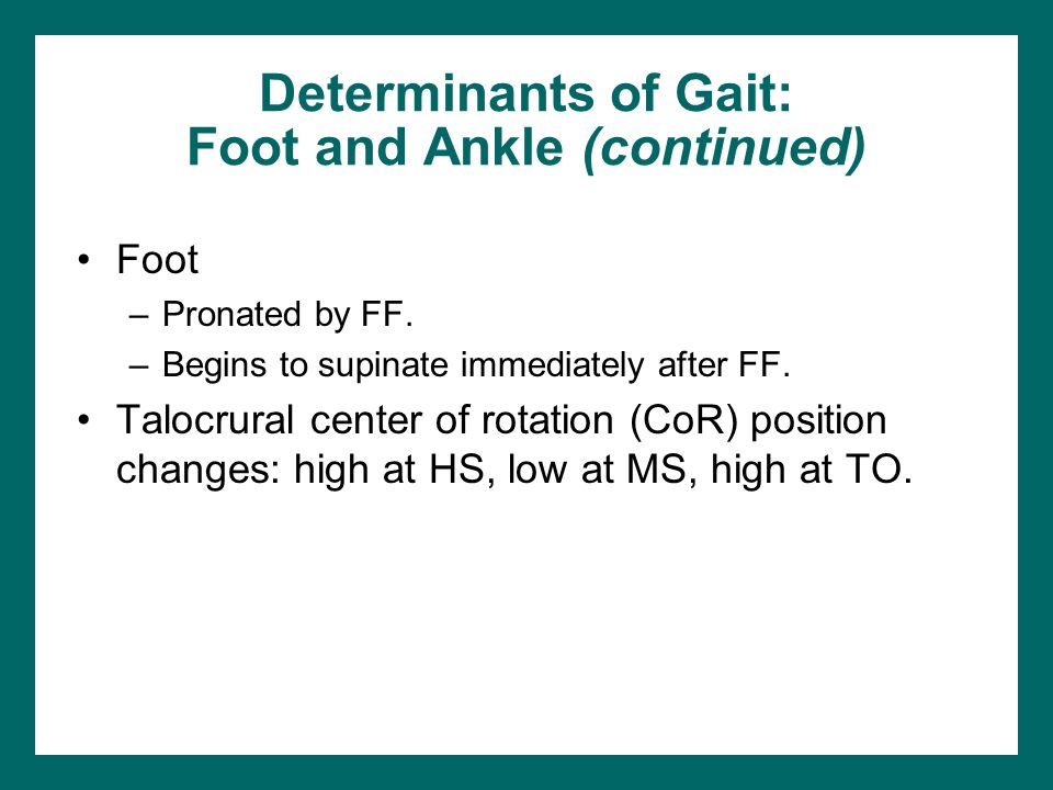 Determinants of Gait: Foot and Ankle (continued)