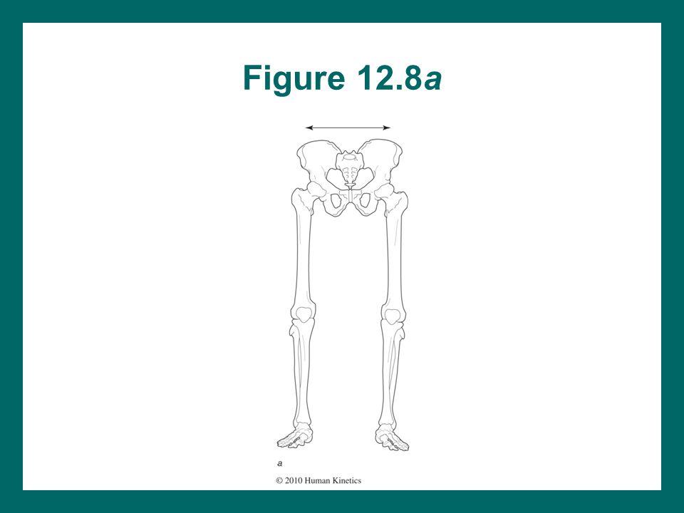 Figure 12.8a