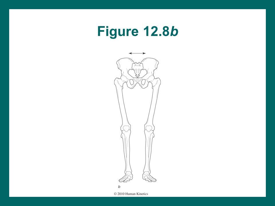 Figure 12.8b