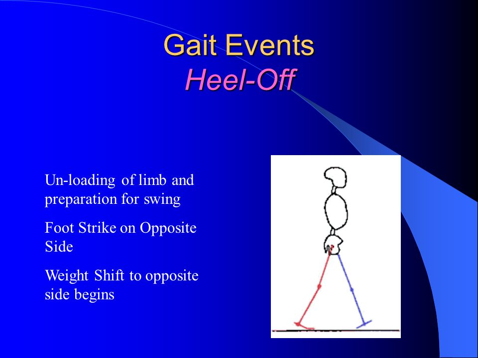 Gait Events Heel-Off Un-loading of limb and preparation for swing