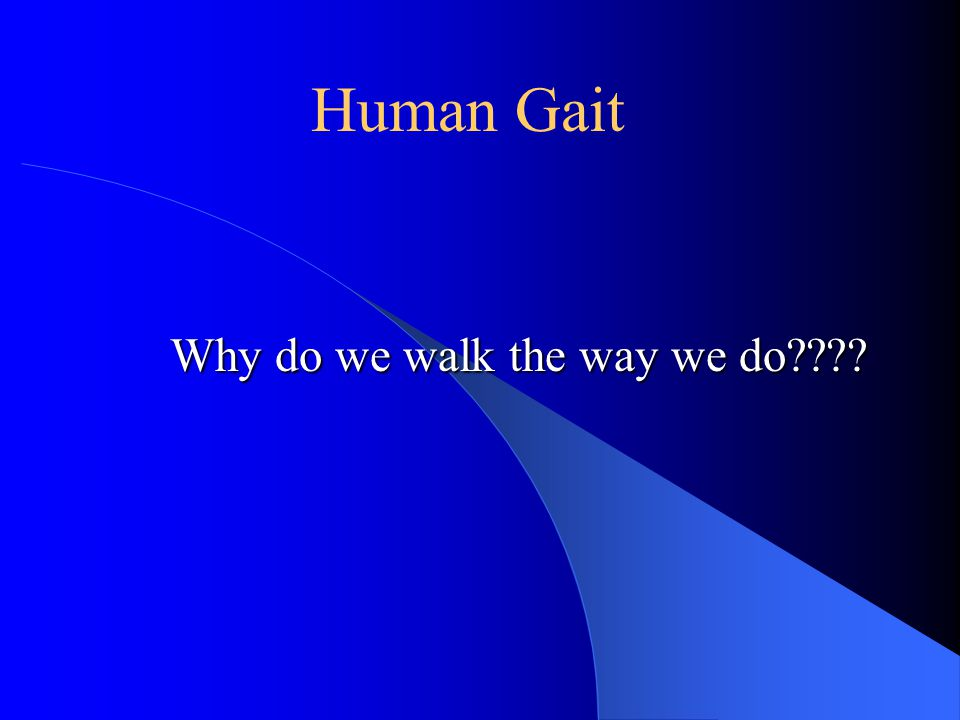 Human Gait Why do we walk the way we do