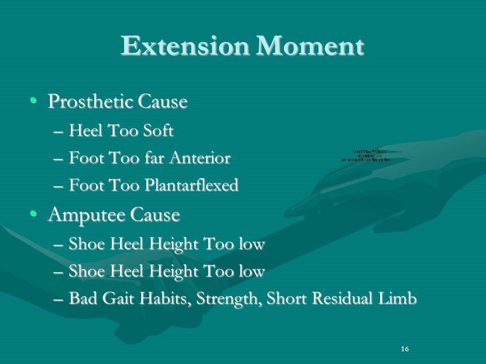 Extension Moment Prosthetic Cause Amputee Cause Heel Too Soft