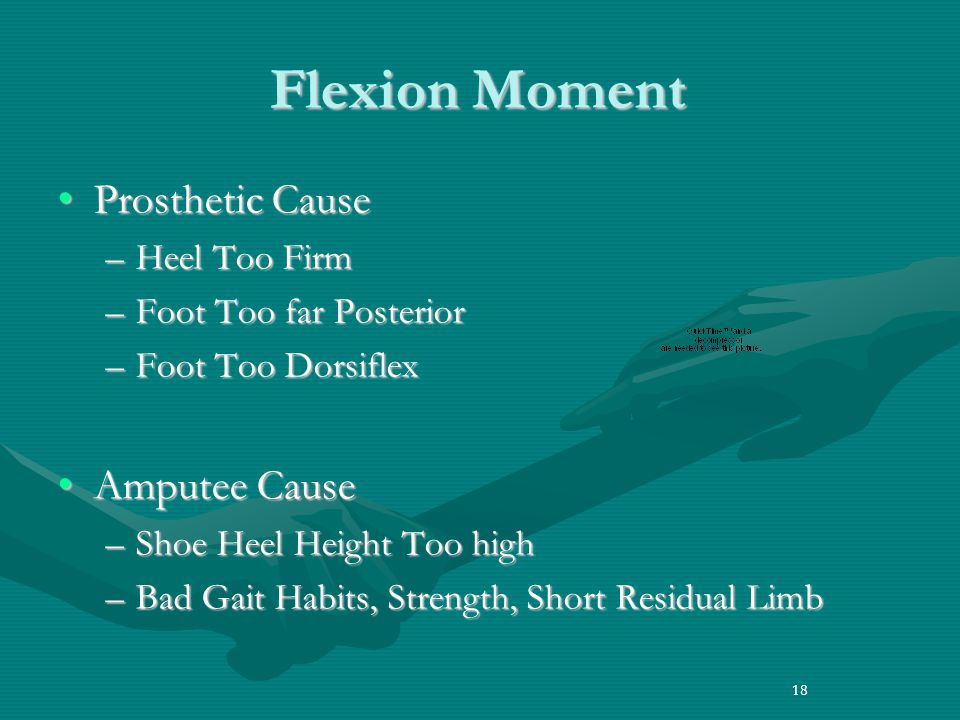 Flexion Moment Prosthetic Cause Amputee Cause Heel Too Firm