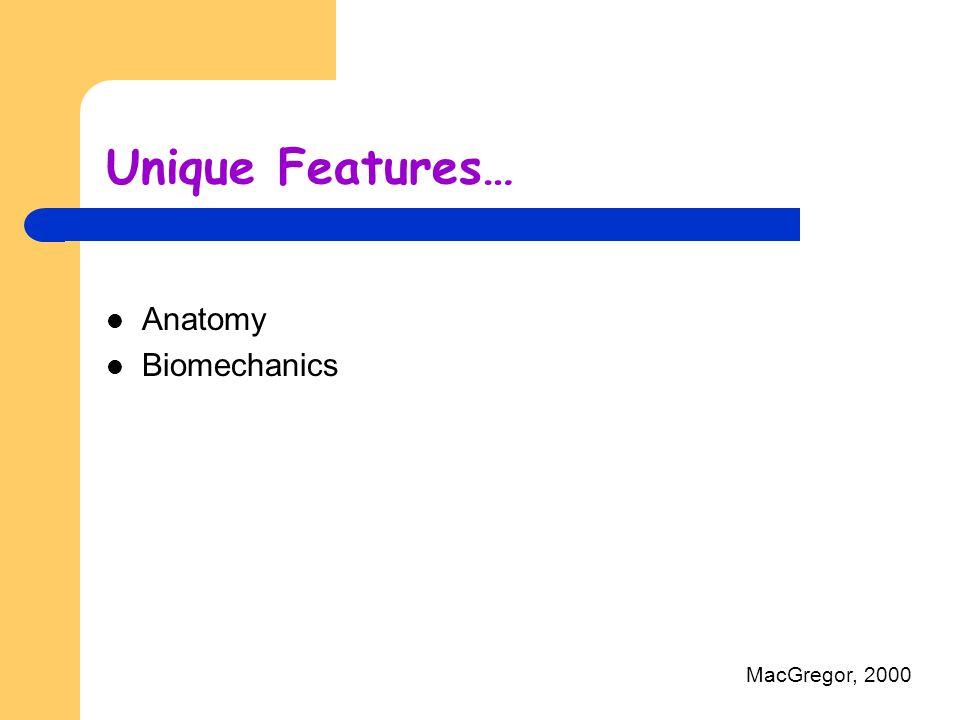 Unique Features… Anatomy Biomechanics MacGregor, 2000