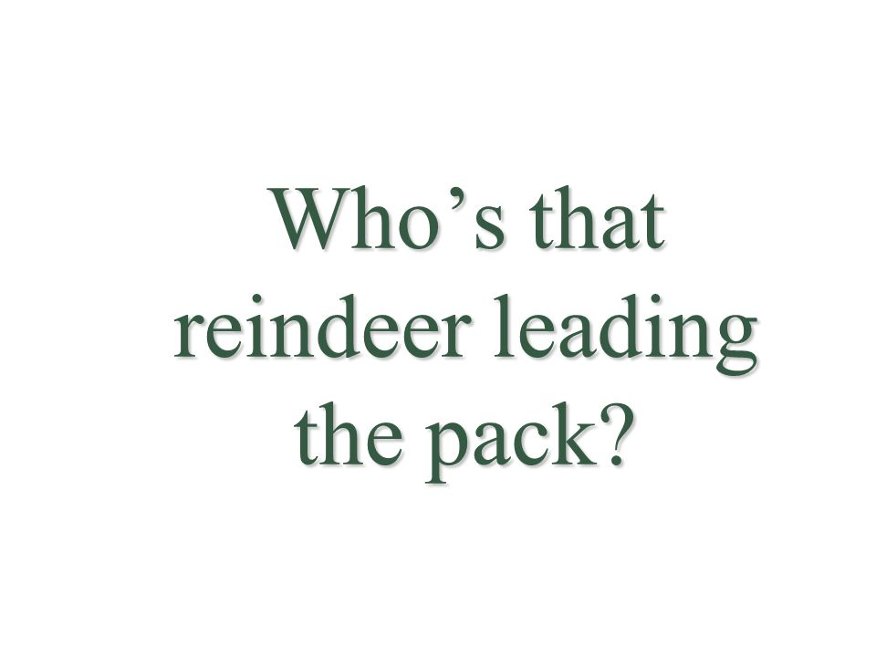 Who's that reindeer leading the pack