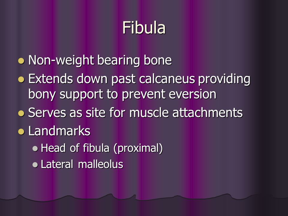Fibula Non-weight bearing bone