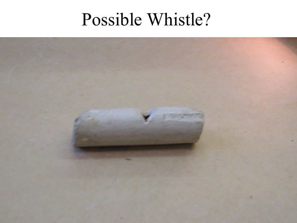 Possible Whistle