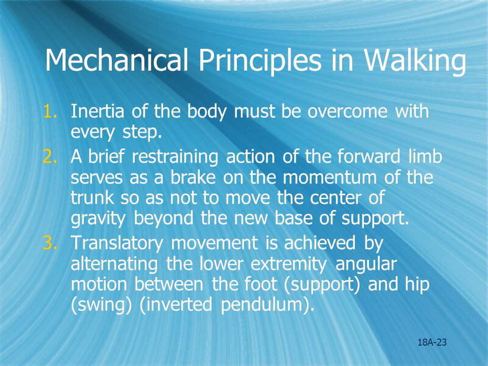 Mechanical Principles in Walking