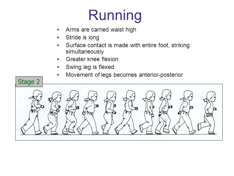Running Stage 2 Arms are carried waist high Stride is long