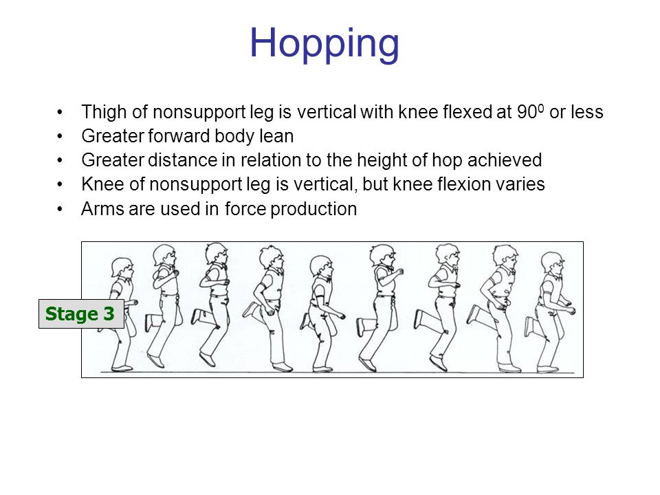 Hopping Thigh of nonsupport leg is vertical with knee flexed at 900 or less. Greater forward body lean.