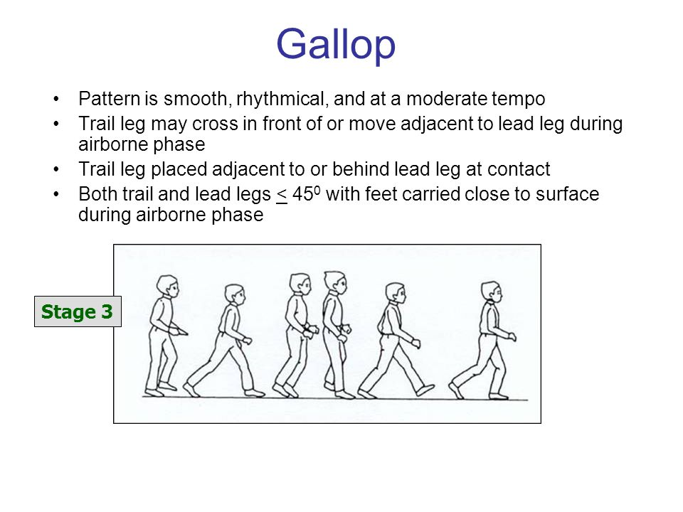 Gallop Pattern is smooth, rhythmical, and at a moderate tempo