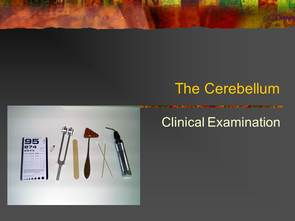The Cerebellum Clinical Examination