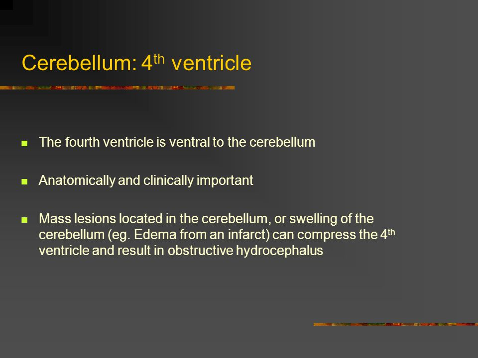 Cerebellum: 4th ventricle