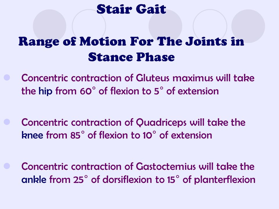 Stair Gait Range of Motion For The Joints in Stance Phase