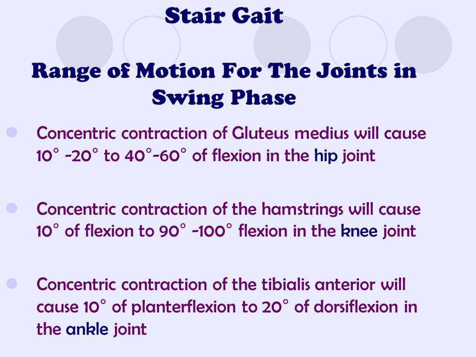 Stair Gait Range of Motion For The Joints in Swing Phase