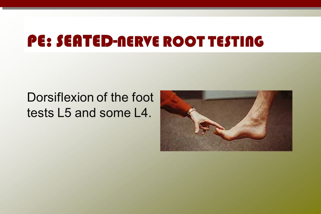 PE: SEATED-NERVE ROOT TESTING