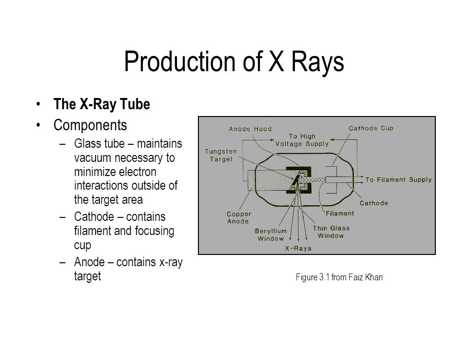Production of X Rays The X-Ray Tube Components