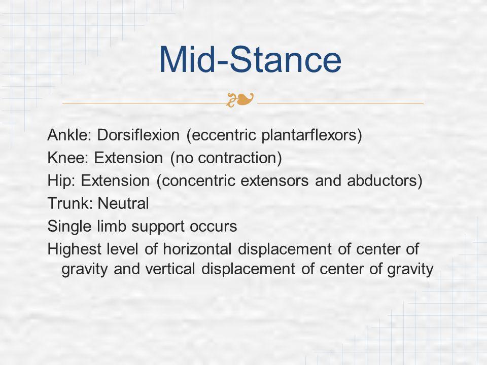 Mid-Stance Ankle: Dorsiflexion (eccentric plantarflexors)