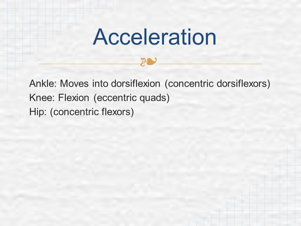 Acceleration Ankle: Moves into dorsiflexion (concentric dorsiflexors)
