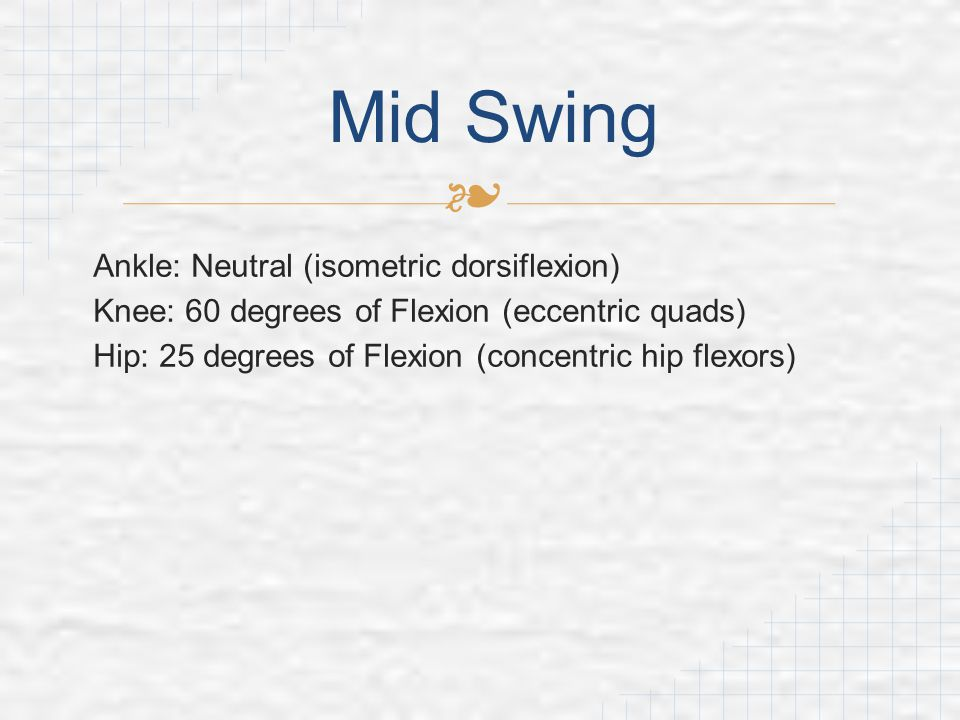 Mid Swing Ankle: Neutral (isometric dorsiflexion)