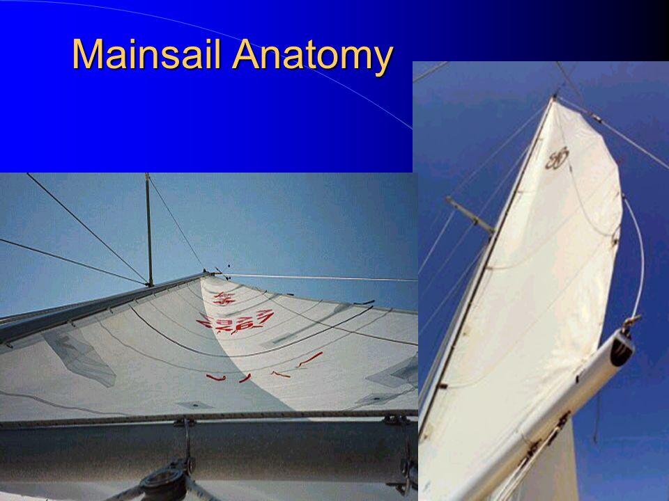 Mainsail Anatomy