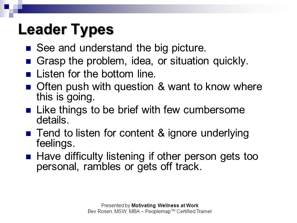 Leader Types See and understand the big picture.