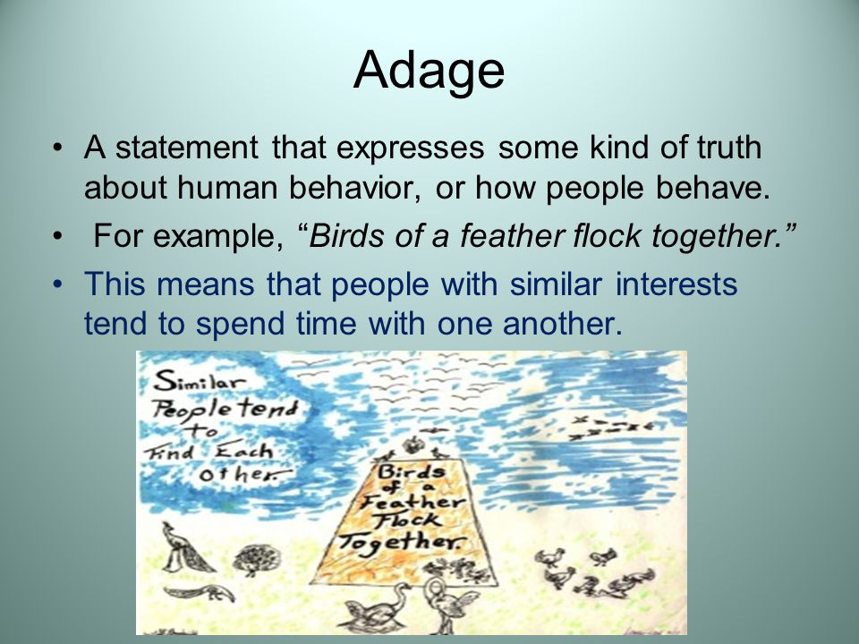 Adage A statement that expresses some kind of truth about human behavior, or how people behave. For example, Birds of a feather flock together.