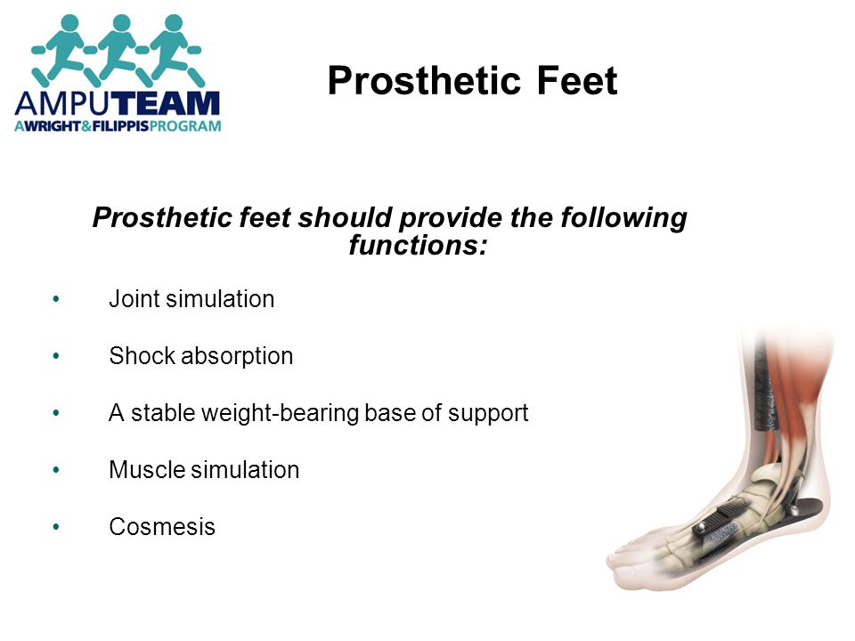 Prosthetic feet should provide the following functions: