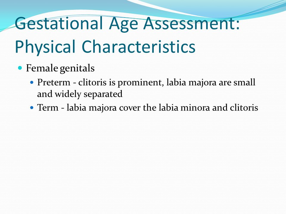 Gestational Age Assessment: Physical Characteristics