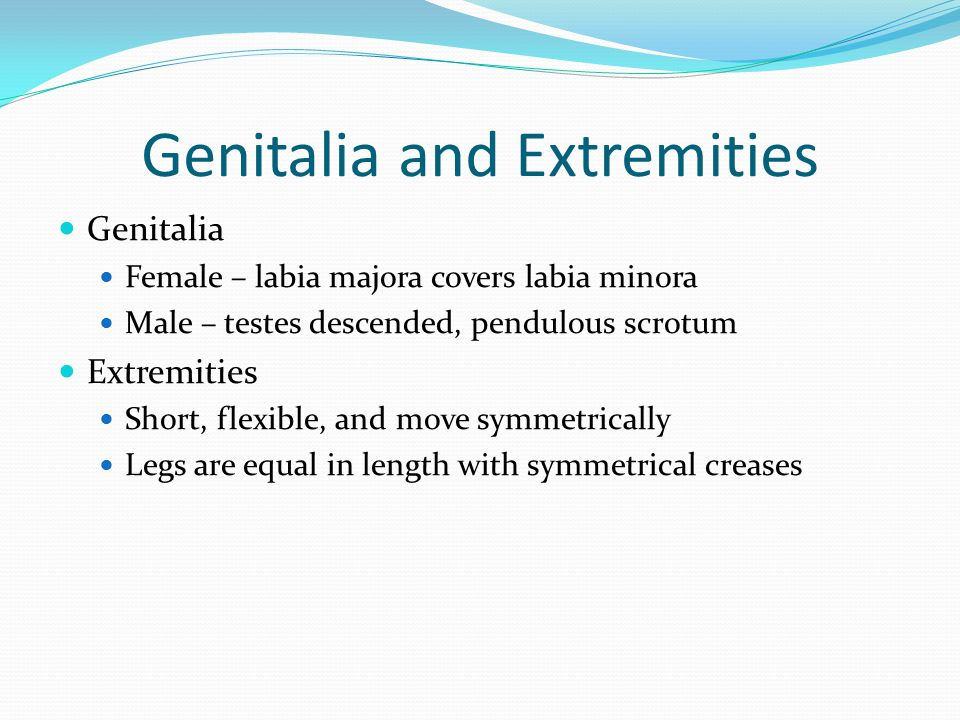 Genitalia and Extremities