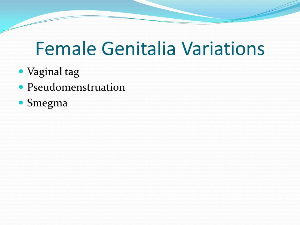 Female Genitalia Variations