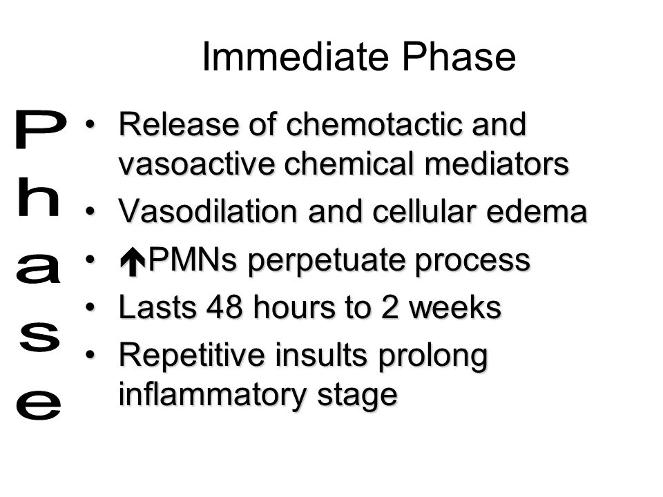 Immediate Phase Release of chemotactic and vasoactive chemical mediators. Vasodilation and cellular edema.