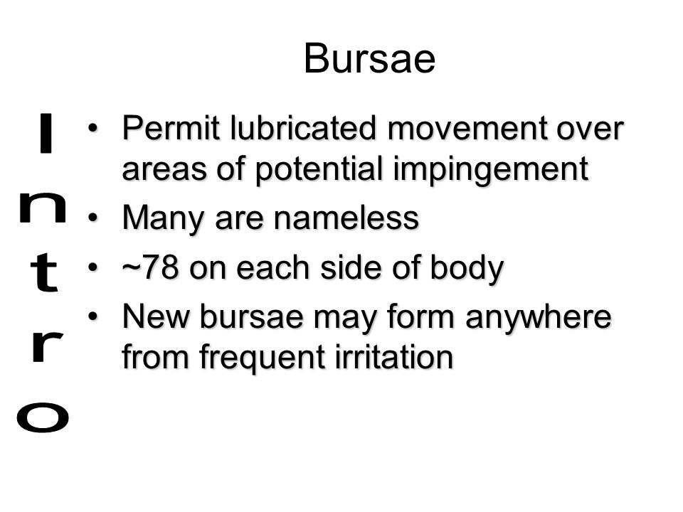Bursae Permit lubricated movement over areas of potential impingement