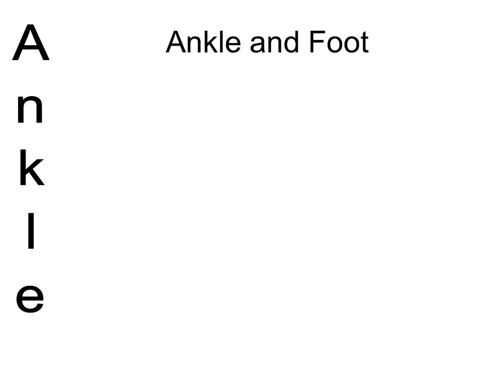 Ankle and Foot Ankle