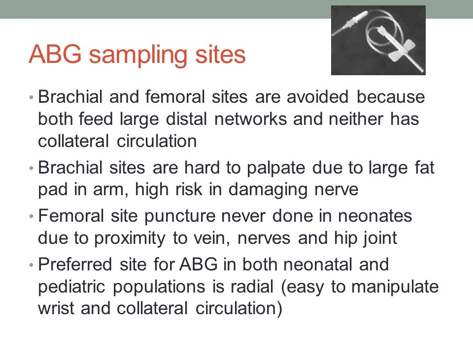 ABG sampling sites Brachial and femoral sites are avoided because both feed large distal networks and neither has collateral circulation.