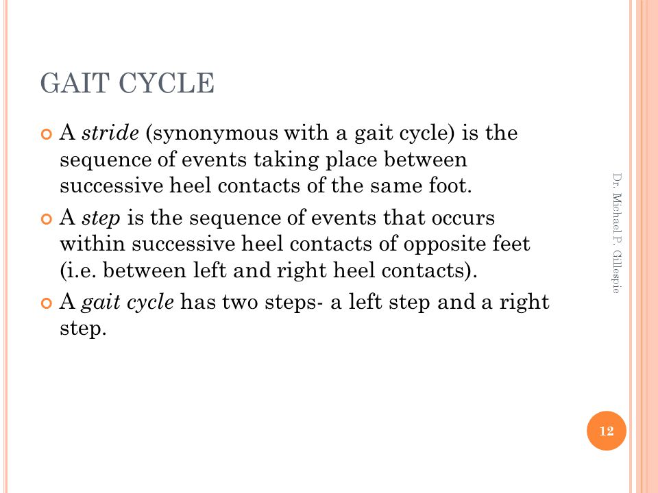 GAIT CYCLE A stride (synonymous with a gait cycle) is the sequence of events taking place between successive heel contacts of the same foot.