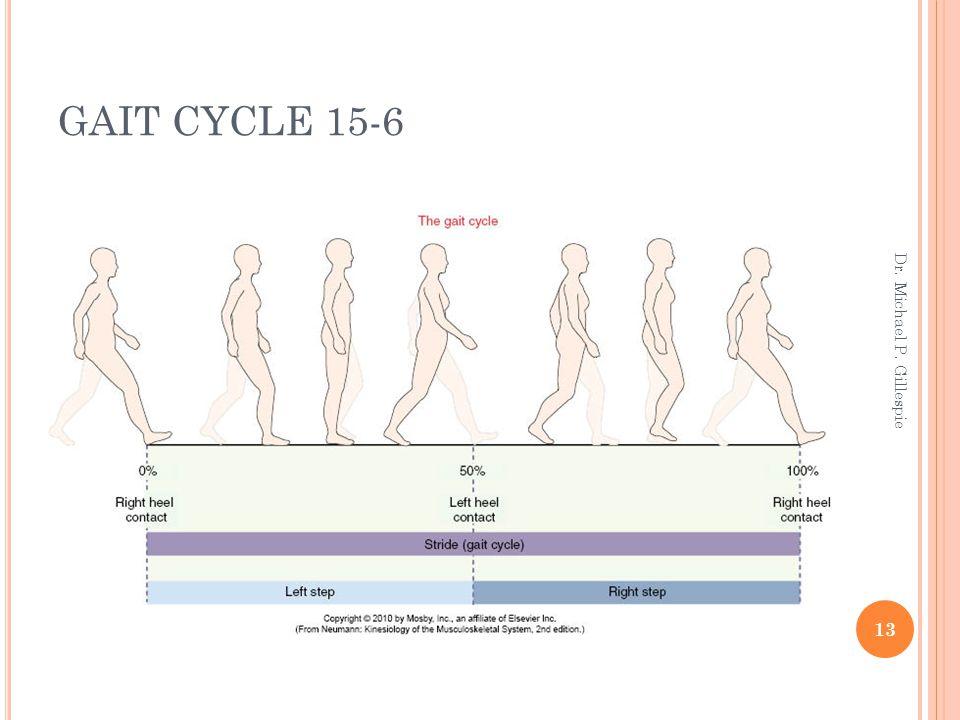 GAIT CYCLE 15-6 Dr. Michael P. Gillespie