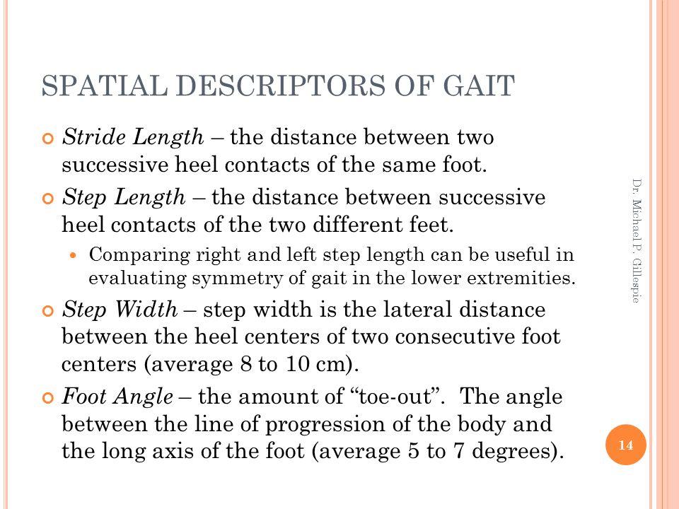 SPATIAL DESCRIPTORS OF GAIT