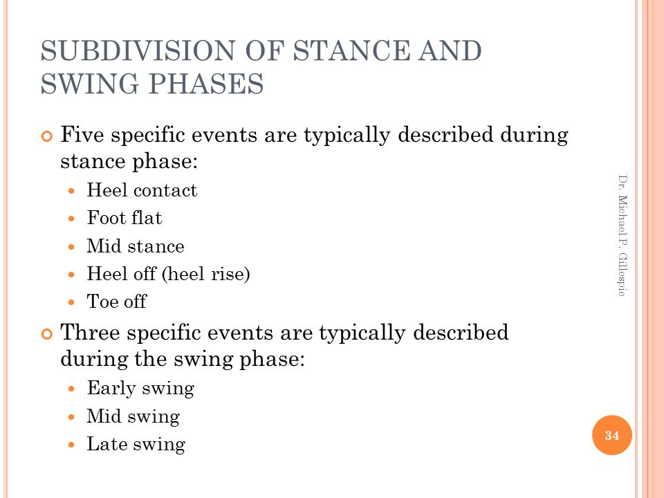 SUBDIVISION OF STANCE AND SWING PHASES