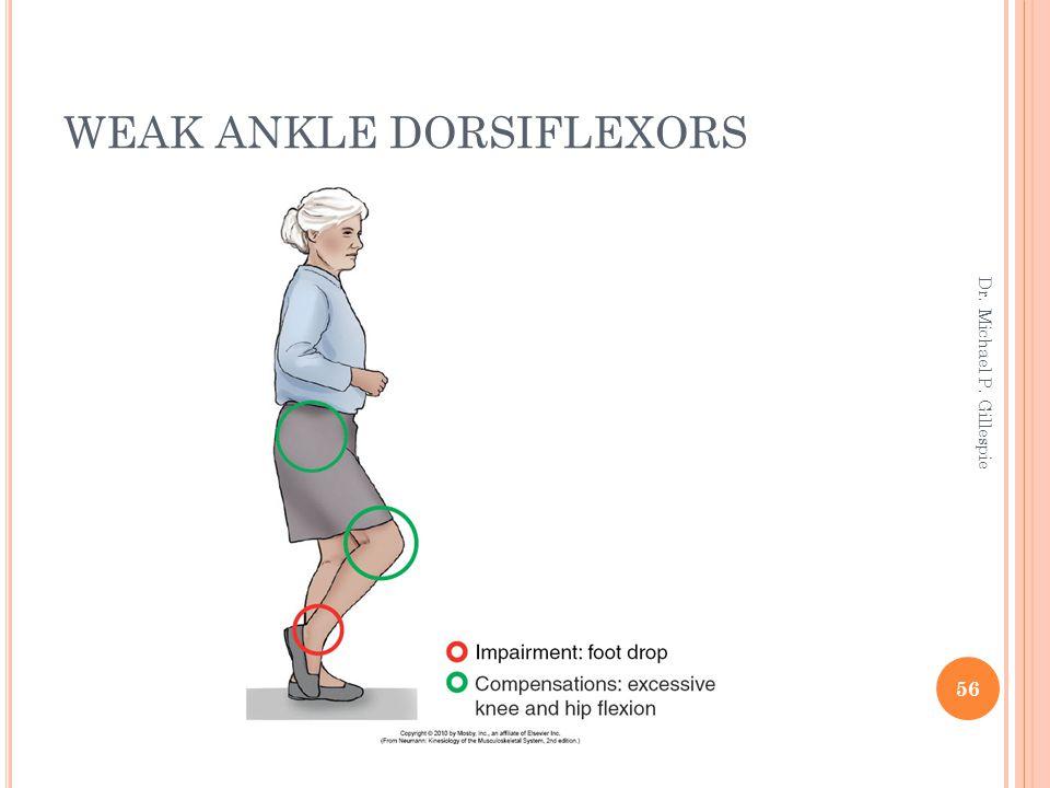 WEAK ANKLE DORSIFLEXORS