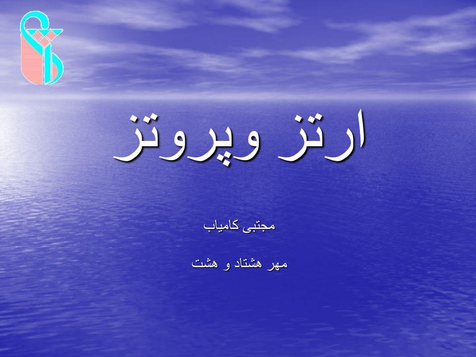 مجتبی کامیاب مهر هشتاد و هشت