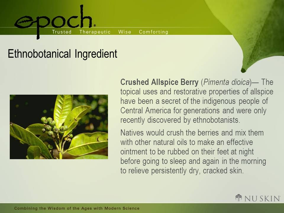 Ethnobotanical Ingredient